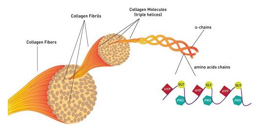 Khi nào cần uống collagen